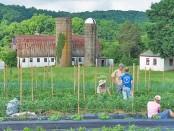 Junior Beginning Farmer Program