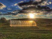 Greenhouse in the Sun - The Seed Farm