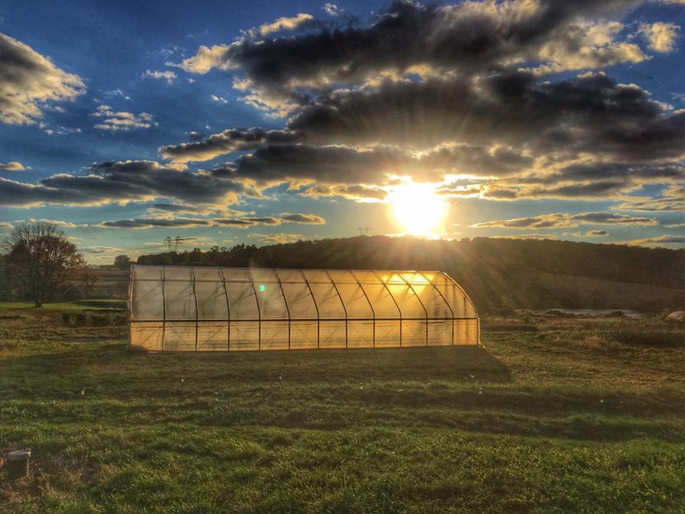 New Farmers Grant Fund