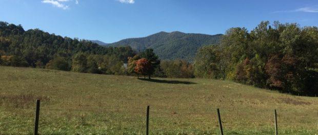 berrey hill farm