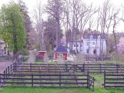 Stonegate Flower Farm