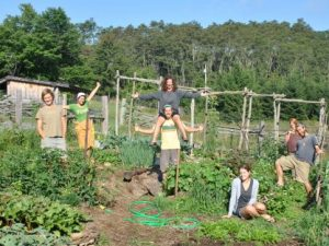 growing food, building community