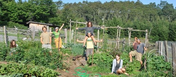 growing food, building community