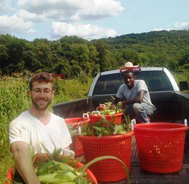 Organic Farm Internship in New Jersey