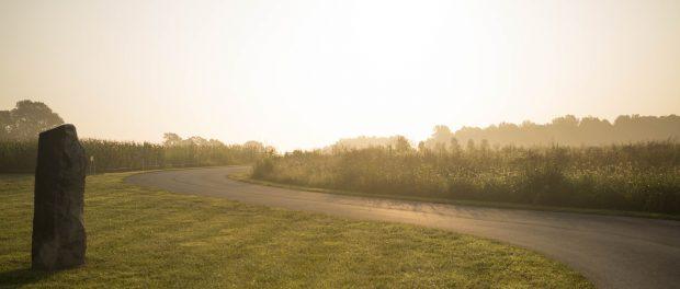 Foxhollow Farm