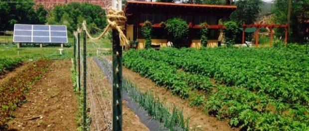 Garden Internships at Colorado Rocky Mountain School