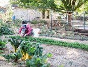 garden educator