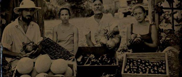 Nook and Cranny Farm
