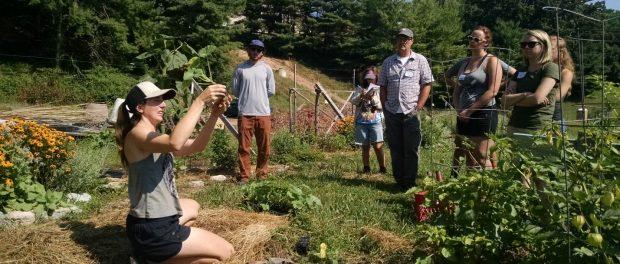 Urban Farm Manager