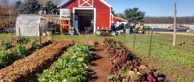small farms winter webinar series
