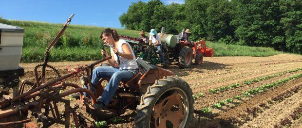 organic farm operations