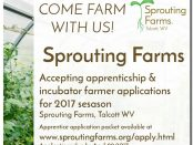 Sprouting Farms Incubator Farm