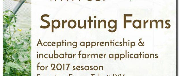 Sprouting Farms Incubator Farm