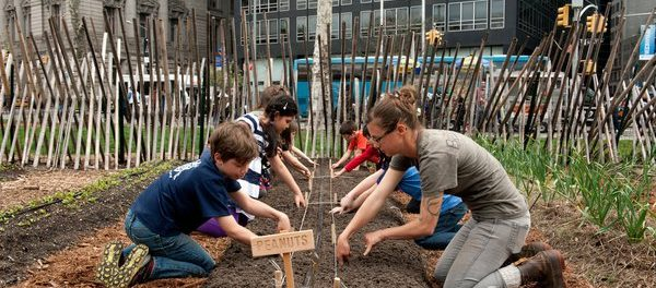 Urban Farm Education Apprentice