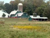 Grass-Based Sustainable Creamery