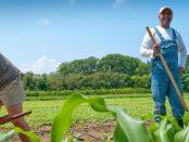 UVM Farmer Training Program