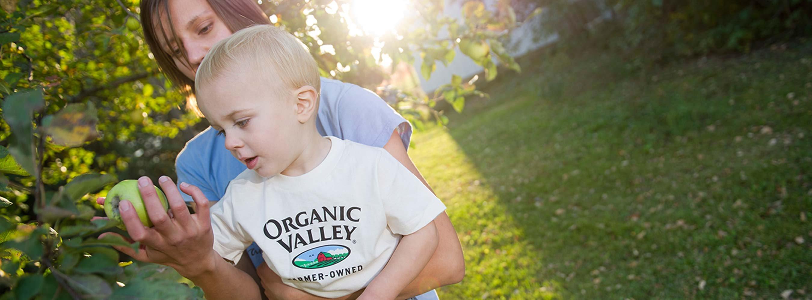 organic grant program