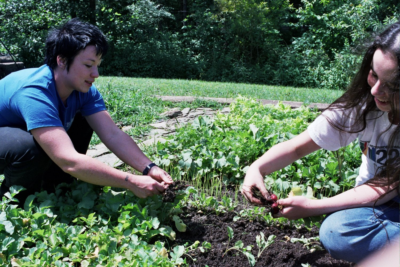 sustainable gardening instructor