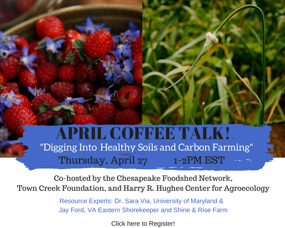 carbon farming and healthy soils