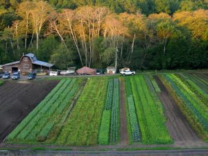 organic farming jobs and internships in California