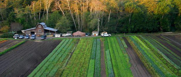 organic farming jobs and internships in California