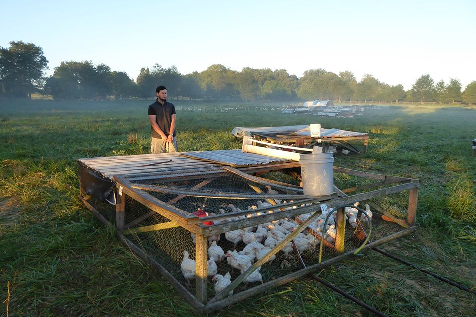 farm internship in Virginia