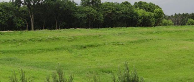 beginning farmer land