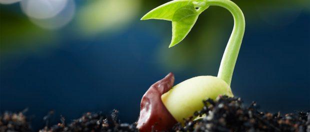 Urban Edge Sustainable Farmers