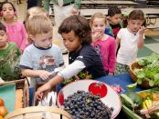 Farm to School Act
