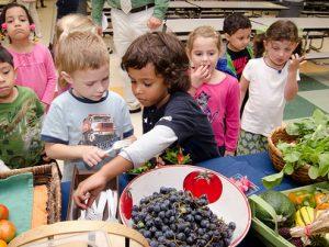 Farm to School Act