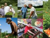 beginning farmer training program