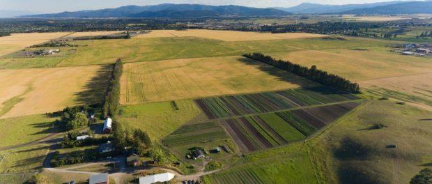 Montana Organic Farm