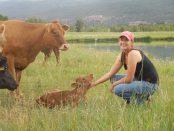 regenerative ranching and farming