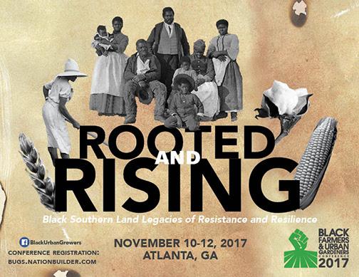 black farmers and urban gardeners