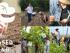 Farmer Training, Business Incubator and Apprenticeship