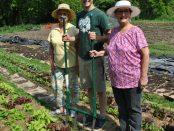 community gardening program