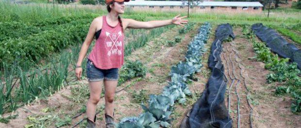 Colorado farm incubator