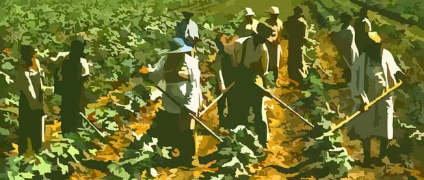 farm employment law