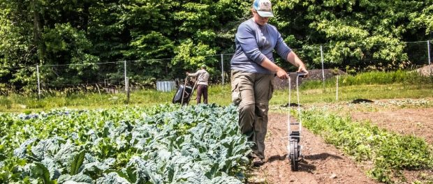 Sustainable Agriculture Apprenticeship