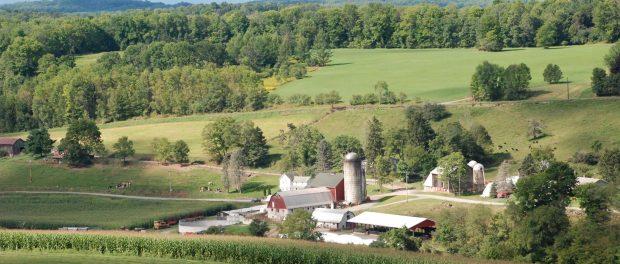 fertile valley farm