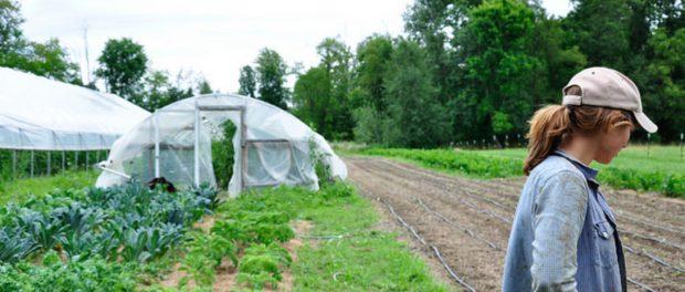 crop insurance modernization