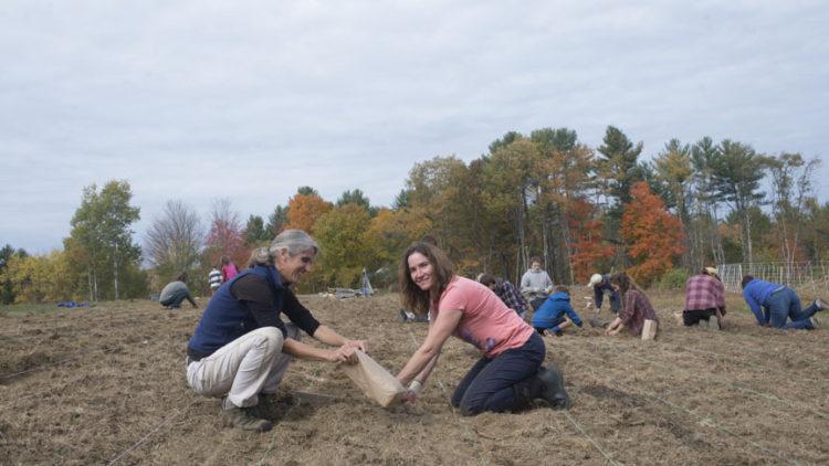 beginning farmer fellowships