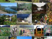 Washington Permaculture